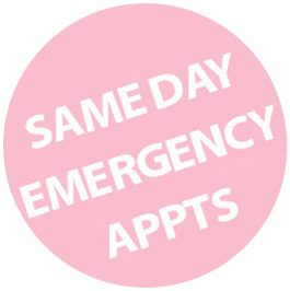 Same Day Emergency Apointments